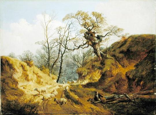 Crown Point, Whitlingham, near Norwich, 1855