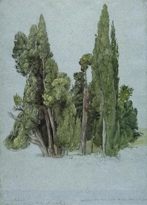 The Cypresses at the Villa d'Este, Tivoli