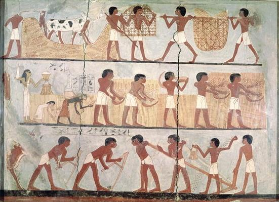 Scenes of sowing and harvesting, from the Tomb of Unsou, East Thebes, New Kingdom