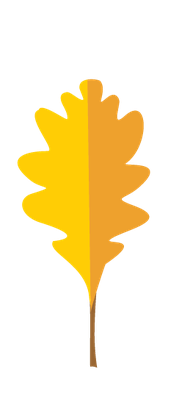 Autumn Season - Oak Leaf | Clipart
