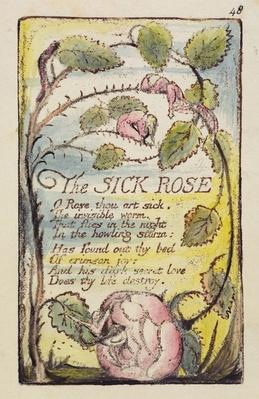 'The Sick Rose', plate 48 from 'Songs of Innocence and of Experience' [Bentley 39] c.1789-94