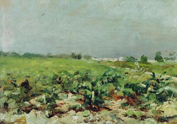 Celeyran, View of the Vineyard, 1880