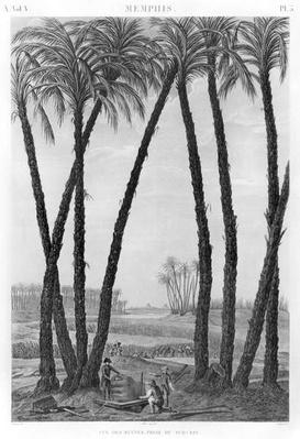 View of the ruins of Memphis seen from the south east, engraved by Jean Louis Delignon