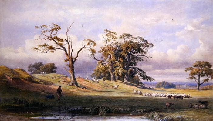 Old British Camp in Bulstrode Park, 1860