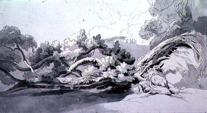 Landscape, with uprooted tree