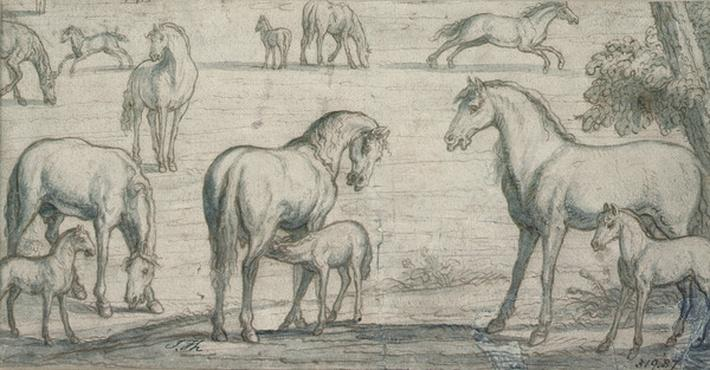 Mares and Foals, 17th century
