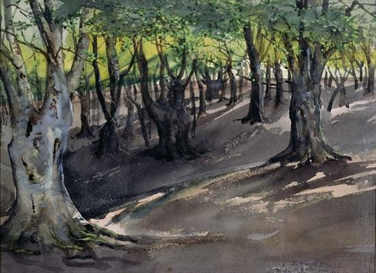 The Heart of Epping Forest, High Beech