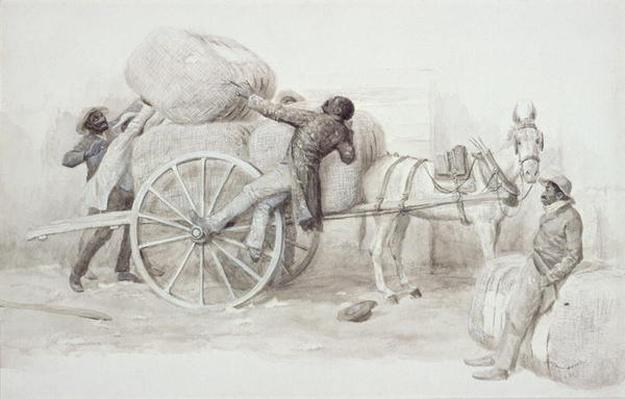 Negroes loading Cotton Bales at Charleston