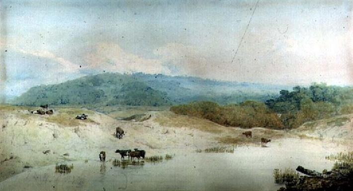 View in Yorkshire, River and Cattle,