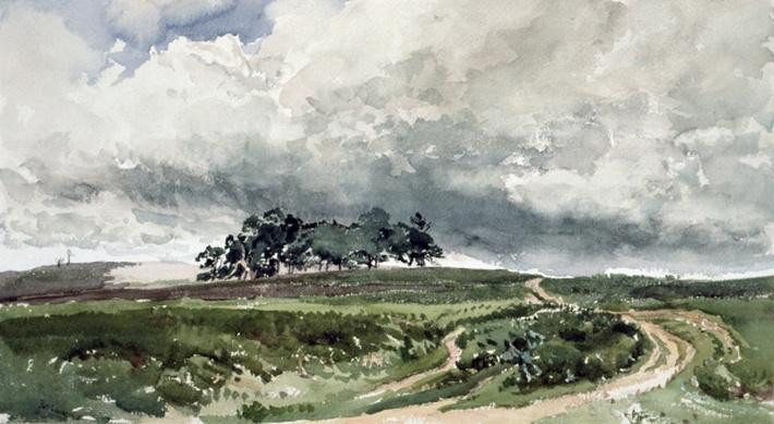 A Heath Scene