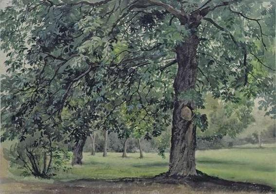 Landscape with Chestnut Tree in the Foreground
