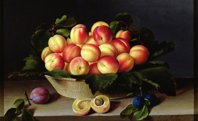 Basket of Apricots, 1634