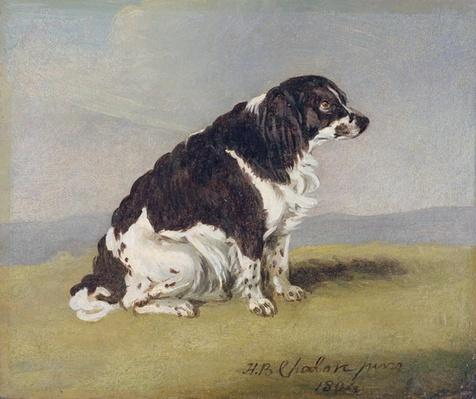 The Duchess of York's Spaniel, 1804