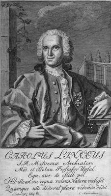 Carl Von Linnaeus | Famous Scientists