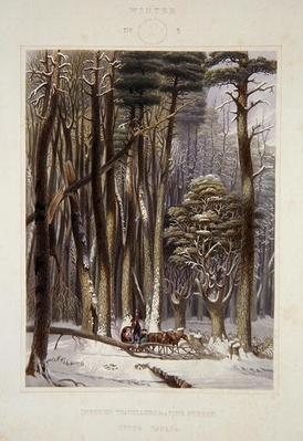 Winter, Impeded Travellers in a Pine Forest, from 'Harvey's Scenes of the Primitive Forest of America', 1841