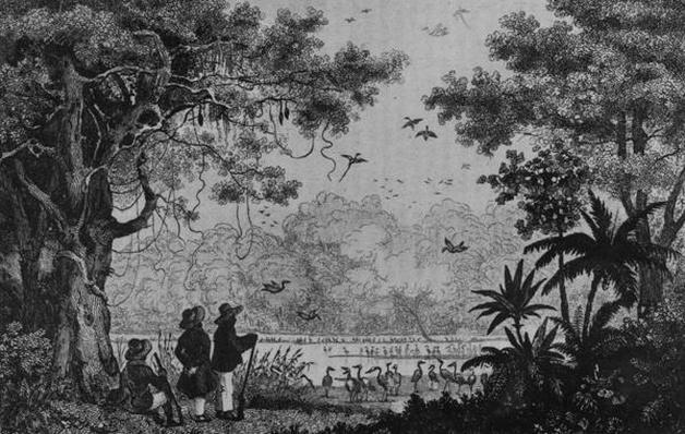 Bird Hunting, from 'Bresil, Columbie et Guyanes' by Ferdinand Denis and Cesar Famin