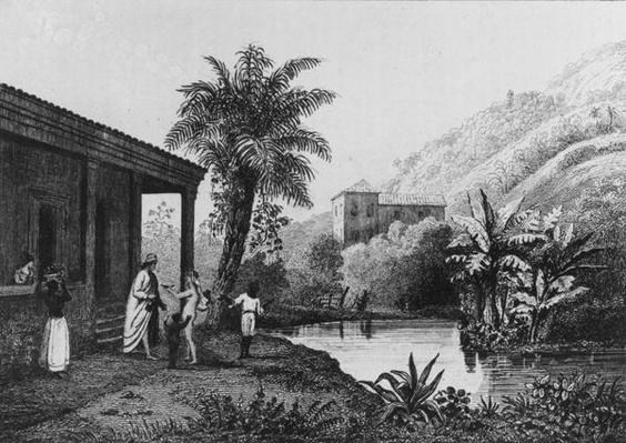 Coffee Plantation,from 'Bresil, Columbie et Guyanes' by Ferdinand Denis and Cesar Famin 1837