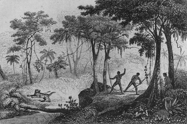 Jaguar Hunt, from 'Bresil, Columbie et Guyanes' by Ferdinand Denis and Cesar Famin 183