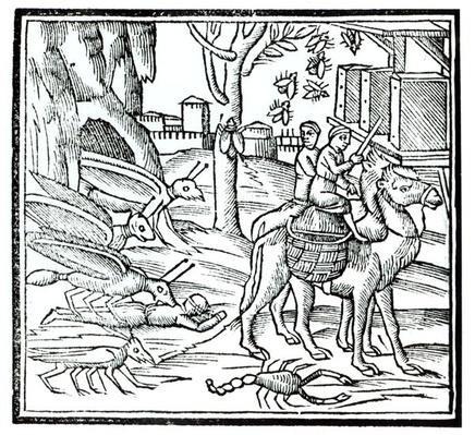 Representation of the Plague, 1572