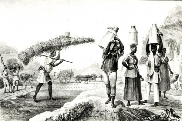 Milk and Capim Vendors, from 'Voyage Pittoresque et Historique au Bresil',