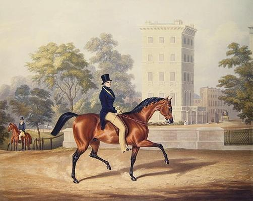 The Marquis of Anglesea on Horseback in Hyde Park, in his 80th year, engraved by J. Harris, 1847