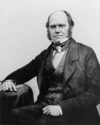 Portrait of Charles Darwin, 1854