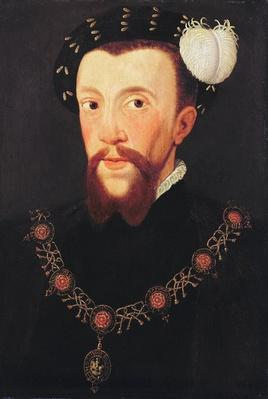 Portrait of Henry Howard, 1546