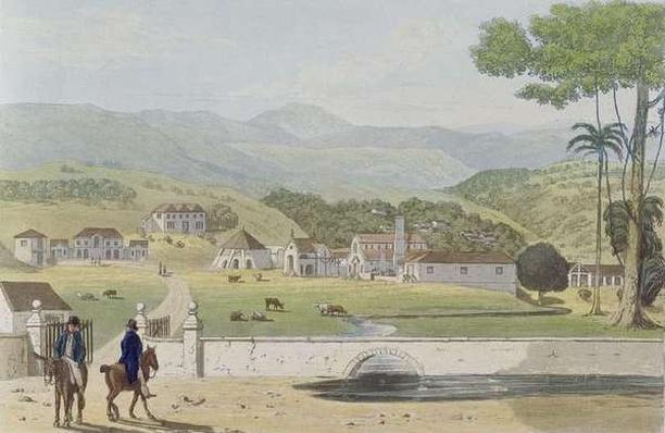 Montpelier Estates, St James, from 'A Picturesque Tour of the Island of Jamaica', engraved by Fielding, 1824