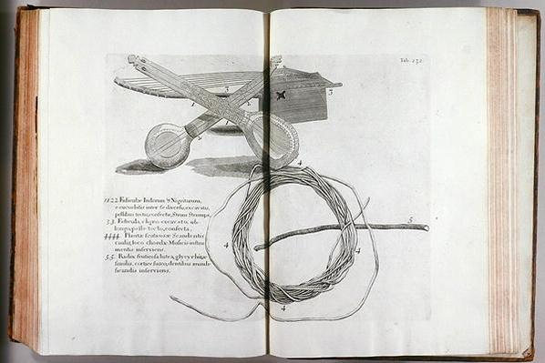 Illustration from the 'Voyage to the Island Madera, Barbados...Vol.2', 1815