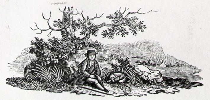 A Gentleman beneath a Tree, from 'Land Birds', published 1797