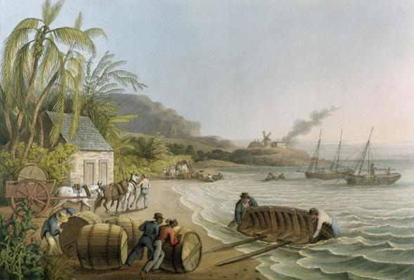 Carting and Putting Sugar Hogsheads on Board', plate X from 'Ten Views in the Island of Antigua', published by W. Clark, London, 1823