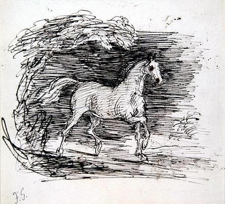 A Grey Horse trotting out of a Wood