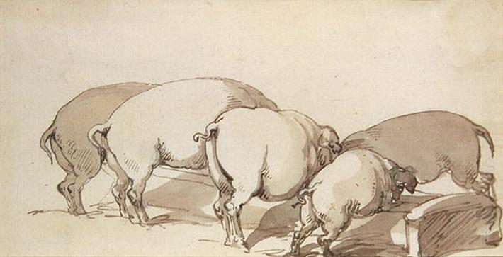 Pigs at a Trough, c.1790