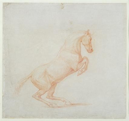 A Prancing Horse, facing right, 1790