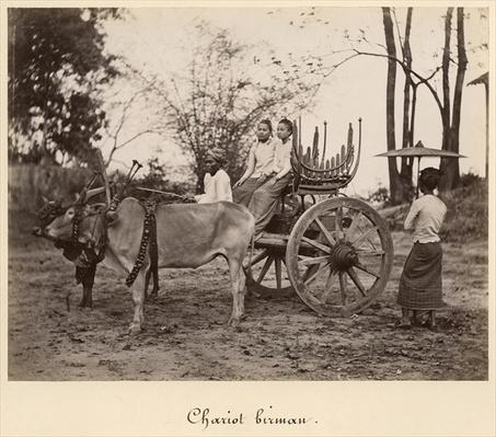 Cart pulled by two oxen at Mandalay, Burma, c.1885