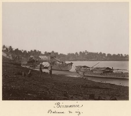 Boats carrying rice on the River Thanlwin, Mupun district, Moulmein, Burma, late 19th century