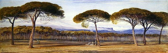 A View of the Pine Woods Above Cannes, 1869