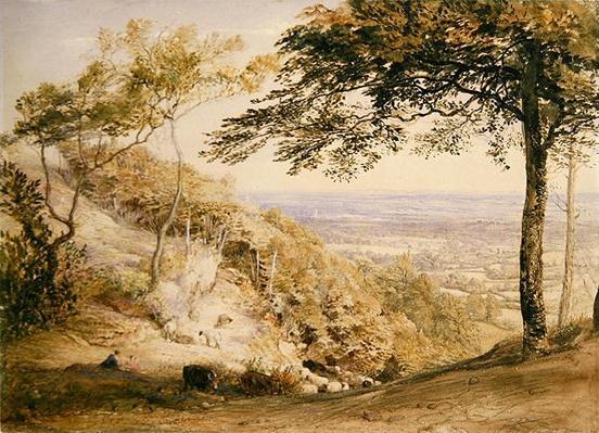Wilmot's Hill, Kent