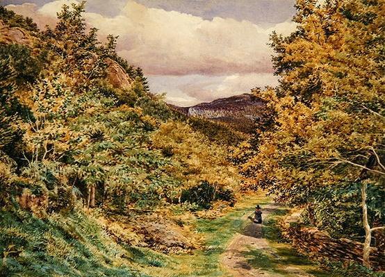A Road near Bettws-y-Coed, 1851