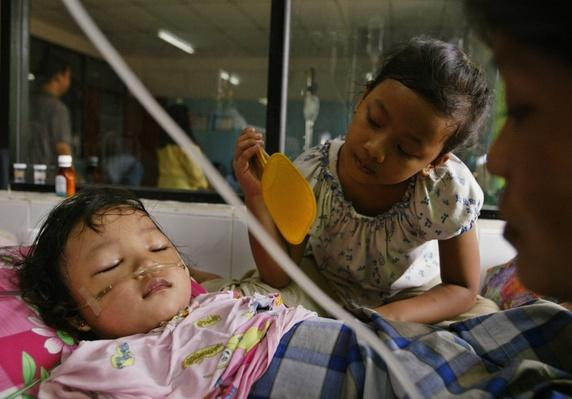 Reported cases Of Dengue Fever In Indonesia Passes 11,000 | Global Infectious Diseases