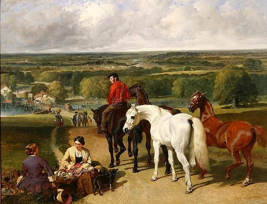 Exercising the royal horses, 1847-55