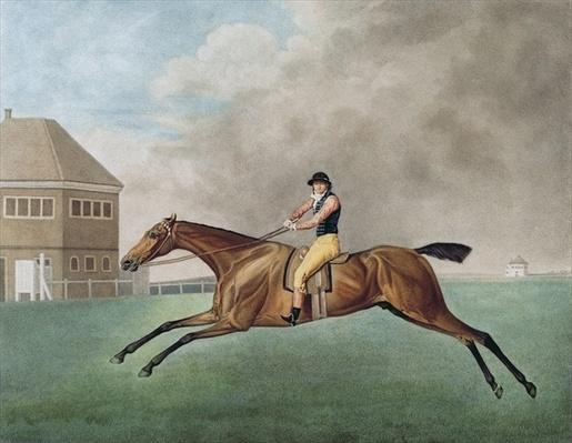 Baronet, 1794