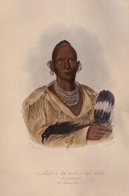 The Black Hawk | Native American Civilizations | U.S. History