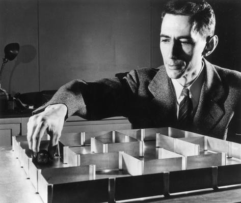 Amazing Mouse | Famous Mathematicians