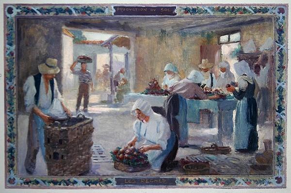 Produce of the Sun: Peaches, 1892
