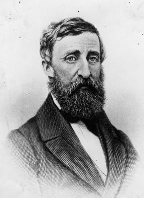 Henry Thoreau | The Transcendentalists | U.S. History