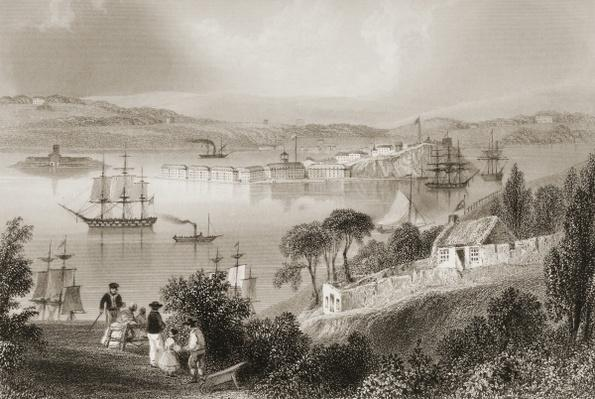 The Cove of Cork