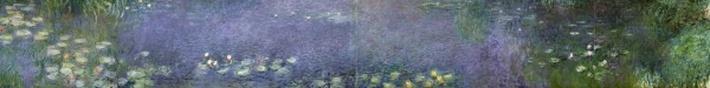Waterlilies: Morning, 1914-18