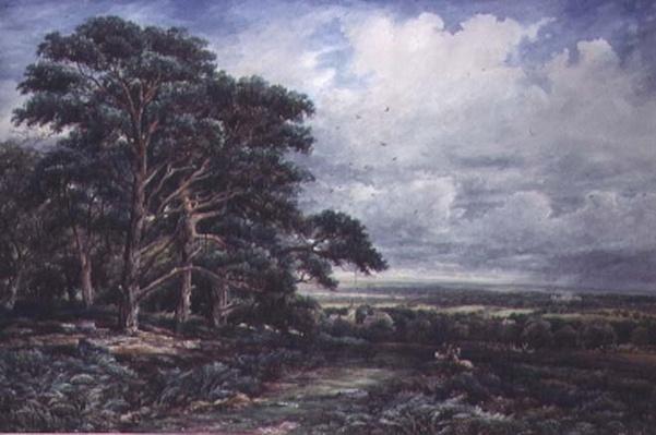 Bradgate Park near Leicester, watercolour