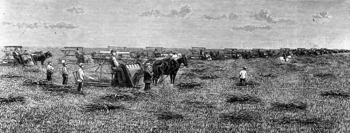 American Farming | The Wild West is Tamed (1870-1910) | U.S. History